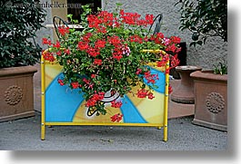 europe, flowerbox, flowers, horizontal, italy, pienza, plants, towns, tuscany, photograph