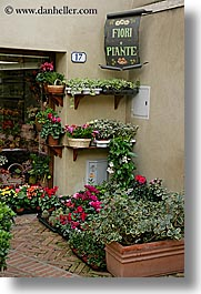 corner, europe, flowers, italy, pienza, plants, towns, tuscany, vertical, photograph