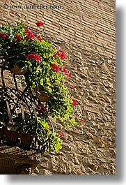 balconies, europe, flowers, italy, pienza, plants, towns, tuscany, vertical, photograph