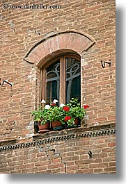 archways, bricks, europe, flowers, italy, pienza, plants, towns, tuscany, vertical, windows, photograph