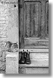 black and white, cats, doors, europe, italy, poderi di coiano, towns, tuscany, vertical, woods, photograph