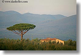 europe, horizontal, houses, italy, mountains, populonia, sunsets, towns, trees, tuscany, photograph