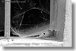 abstracts, black and white, cobwebs, europe, feathers, horizontal, italy, scarperia, slow exposure, towns, tuscany, photograph