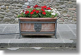 boxes, europe, flowers, horizontal, italy, scarperia, towns, tuscany, photograph