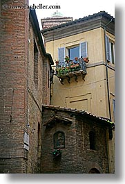 europe, flowers, geraniums, italy, siena, towns, tuscany, vertical, windows, photograph