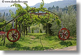 europe, grapes, horizontal, italy, tuscany, vines, wagon wheels, wheels, wineries, photograph