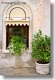 doors & windows, europe, italy, plants, potted, venecia, venezia, venice, vertical, windows, photograph
