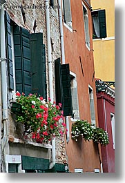 doors & windows, europe, flowers, italy, venecia, venezia, venice, vertical, windows, photograph