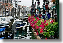 canals, europe, flowers, horizontal, italy, venecia, venezia, venice, photograph