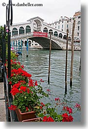 bridge, europe, flowers, italy, rialto, rialto bridge, venecia, venezia, venice, vertical, photograph