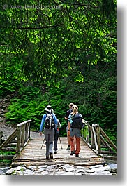 activities, bridge, europe, forests, hikers, hiking, nature, paths, people, plants, poland, trees, vertical, womens, photograph