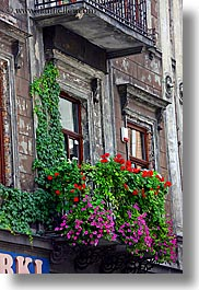 balconies, colored, europe, flowers, from, krakow, nature, plants, poland, vertical, photograph