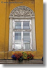 colorful, colors, europe, flowers, krakow, oranges, poland, vertical, walls, windows, yellow, photograph