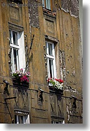 boxes, europe, flowers, krakow, poland, red, vertical, windows, photograph