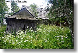 barn, buildings, europe, green, horizontal, old, poland, weeds, zakopane, photograph