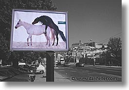 artsie, europe, horizontal, horses, portugal, signs, western europe, photograph