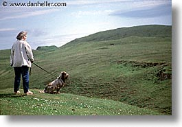 dogs, england, europe, horizontal, scotland, skye, united kingdom, photograph