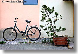 bicycles, europe, horizontal, leaning, slovakia, trees, photograph