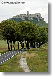 castles, europe, lined, roads, slovakia, spis castle, trees, vertical, photograph