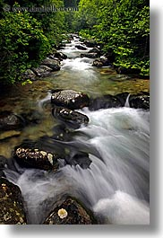 europe, flowing, leaves, motion blur, rivers, slovakia, slow exposure, vertical, water, photograph