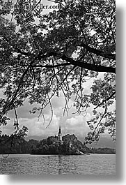 black and white, bled, branches, churches, europe, islands, lakes, slovenia, vertical, photograph
