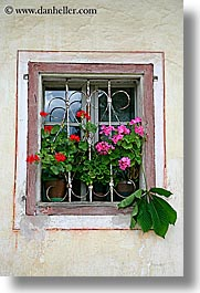 bohinj, europe, flowers, geraniums, slovenia, vertical, windows, photograph