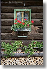 bohinj, europe, flowers, geraniums, slovenia, vertical, windows, woods, photograph