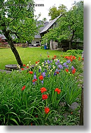 bohinj, europe, flowers, gardens, houses, slovenia, vertical, photograph