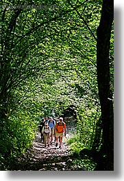 bohinj, europe, groups, hike, hiking, paths, people, slovenia, trees, tunnel, vertical, walk, photograph