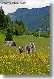 barn, bohinj, europe, hiking, people, slovenia, vertical, walk, wildflowers, photograph