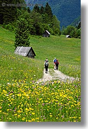 barn, bohinj, europe, hiking, paths, people, slovenia, vertical, walk, wildflowers, photograph