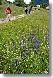 bohinj, europe, hiking, paths, people, slovenia, vertical, walk, wildflowers, photograph