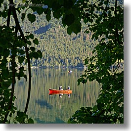 bohinj, branches, canoes, europe, fishermen, lakes, slovenia, square format, squares, trees, water, photograph