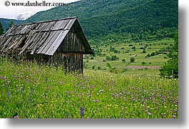 bohinj, europe, horizontal, old, scenics, shack, shed, slovenia, wildflowers, photograph