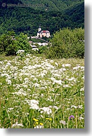 bohinj, churches, europe, scenics, slovenia, vertical, wildflowers, photograph