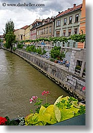 buildings, cities, europe, flowers, ljubljana, river bank, rivers, slovenia, vertical, photograph