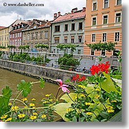 buildings, cities, europe, flowers, ljubljana, river bank, rivers, slovenia, square format, photograph