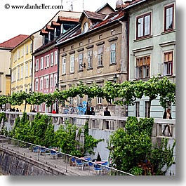 buildings, cities, europe, ivy, ljubljana, riverbank, slovenia, square format, towns, photograph