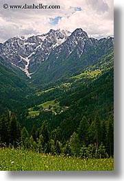 clouds, europe, logarska dolina, mountains, scenics, slovenia, snowcaps, vertical, views, wildflowers, photograph