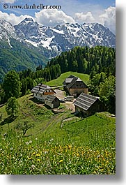 barn, clouds, europe, houses, logarska dolina, mountains, scenics, slovenia, snowcaps, vertical, views, wildflowers, photograph