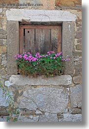 europe, flowers, miscellaneous, pink, slovenia, vertical, windows, woods, photograph
