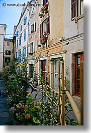 europe, flowers, narrow streets, pirano, slovenia, vertical, windows, photograph