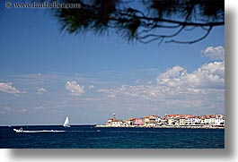 branches, clouds, coast, europe, horizontal, ocean, piran, pirano, shoreline, slovenia, water, photograph