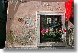 europe, flowers, horizontal, pirano, slovenia, windows, photograph