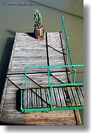 dock, europe, plants, ptuj, slovenia, vertical, photograph
