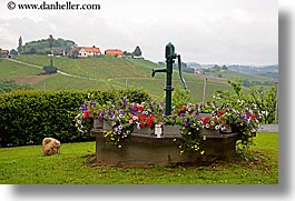 europe, flowers, horizontal, slovenia, styria, water pump, photograph