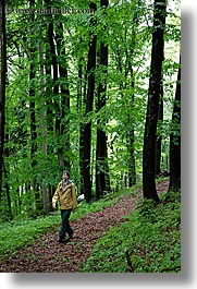 europe, forests, hikers, lush, paths, slovenia, styria, vertical, photograph