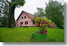 azaleas, europe, flowers, horizontal, houses, pink, slovenia, styria, photograph