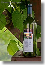 europe, reisling, slovenia, styria, vertical, white, white wine, wines, photograph