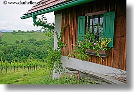 europe, horizontal, houses, slovenia, styria, vineyards, windows, photograph